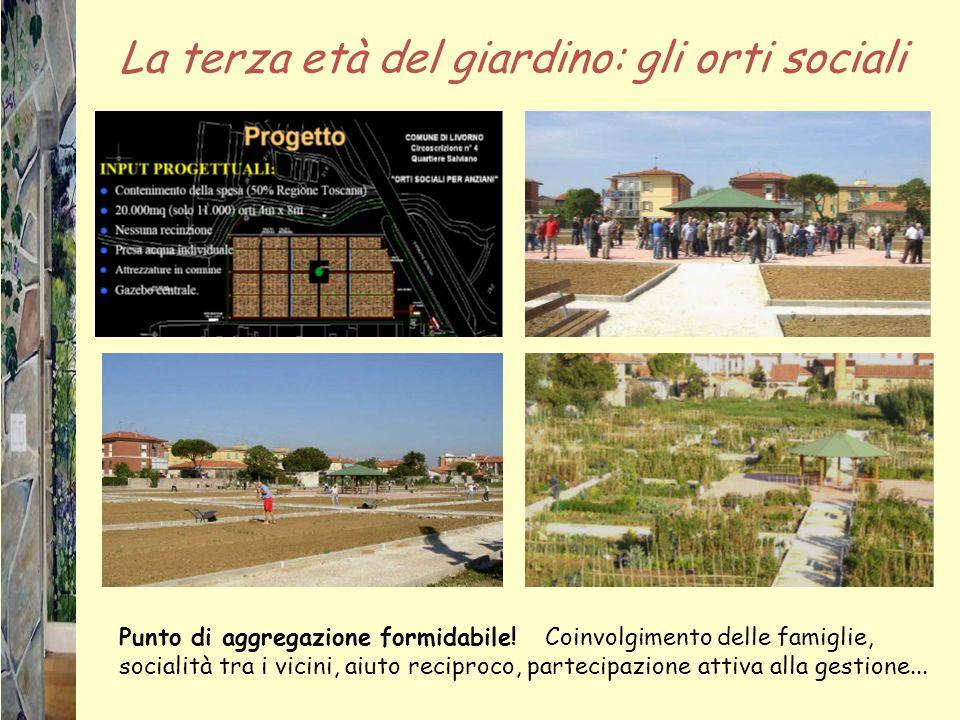 La terza età del giardino: gli orti sociali Punto di aggregazione formidabile! Coinvolgimento delle famiglie, socialità tra i vicini, aiuto reciproco,
