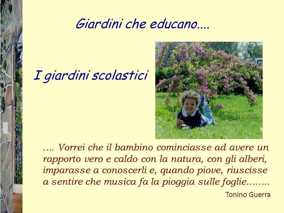 …. Vorrei che il bambino cominciasse ad avere un rapporto vero e caldo con la natura, con gli alberi, imparasse a conoscerli e, quando piove, riusciss