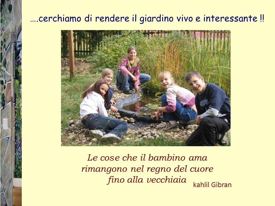 ….cerchiamo di rendere il giardino vivo e interessante !! Le cose che il bambino ama rimangono nel regno del cuore fino alla vecchiaia kahlil Gibran