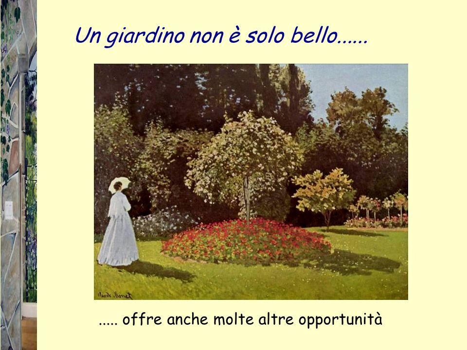 Un giardino non è solo bello........... offre anche molte altre opportunità