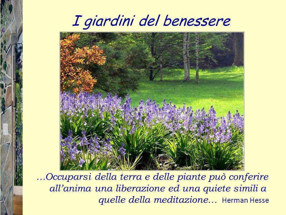 I giardini del benessere …Occuparsi della terra e delle piante può conferire allanima una liberazione ed una quiete simili a quelle della meditazione…