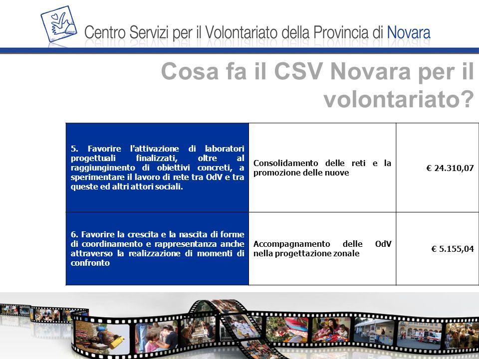 Cosa fa il CSV Novara per il volontariato. 5.