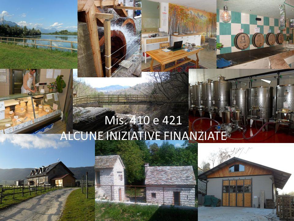 Mis. 410 e 421 ALCUNE INIZIATIVE FINANZIATE