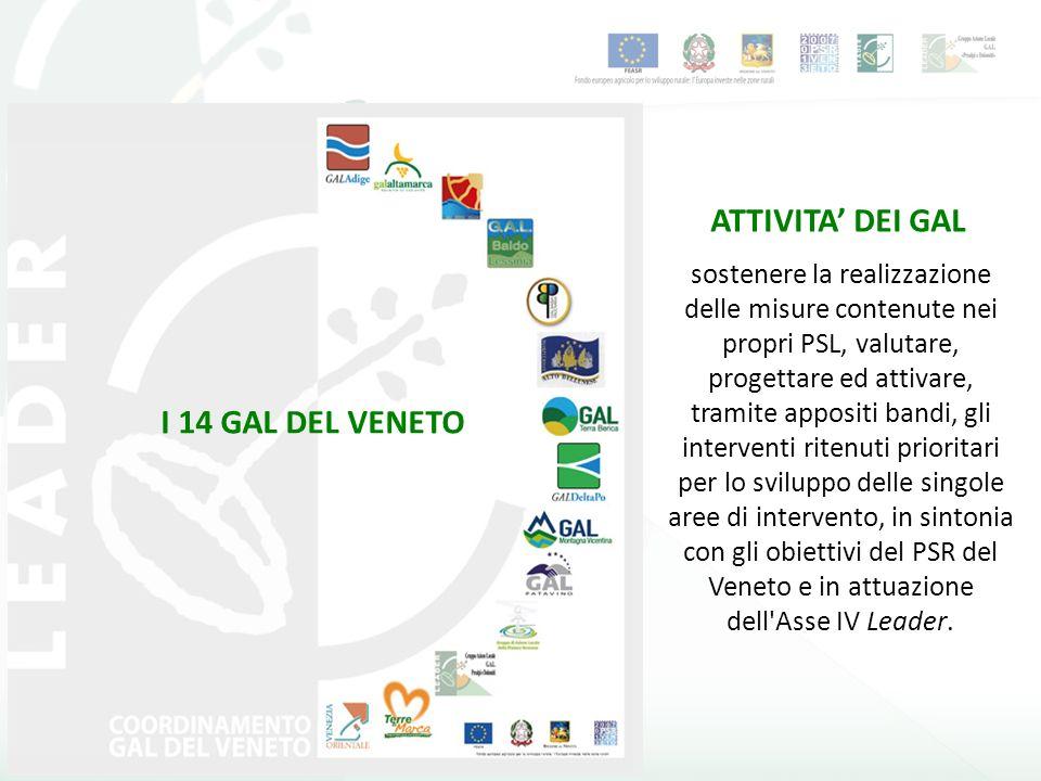 I 14 GAL DEL VENETO ATTIVITA DEI GAL sostenere la realizzazione delle misure contenute nei propri PSL, valutare, progettare ed attivare, tramite appositi bandi, gli interventi ritenuti prioritari per lo sviluppo delle singole aree di intervento, in sintonia con gli obiettivi del PSR del Veneto e in attuazione dell Asse IV Leader.