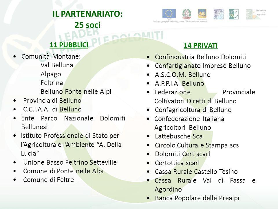 IL PARTENARIATO: 25 soci 11 PUBBLICI Comunità Montane: Val Belluna Alpago Feltrina Belluno Ponte nelle Alpi Provincia di Belluno C.C.I.A.A.