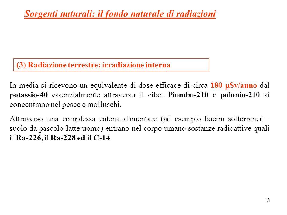 3 (3) Radiazione terrestre: irradiazione interna In media si ricevono un equivalente di dose efficace di circa 180 Sv/anno dal potassio-40 essenzialme