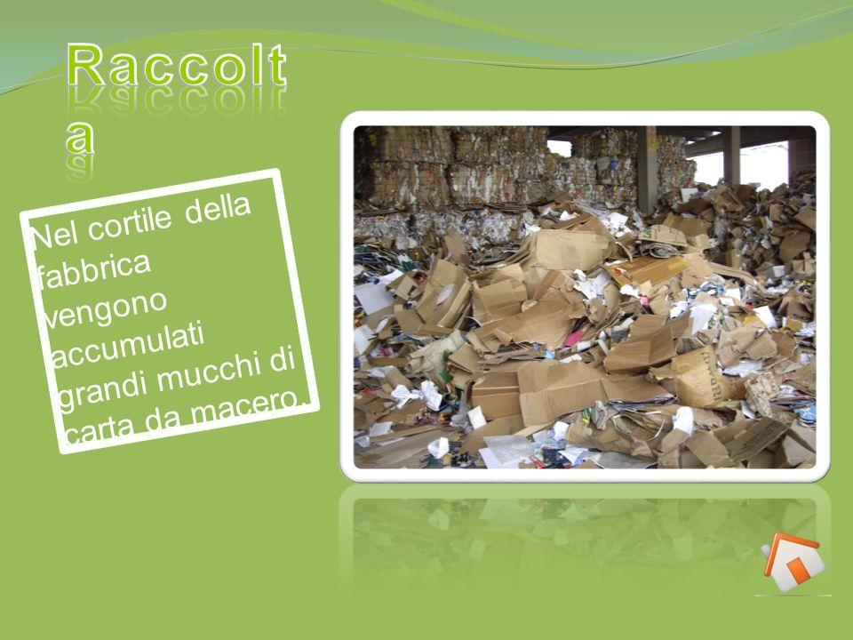 Nel cortile della fabbrica vengono accumulati grandi mucchi di carta da macero.