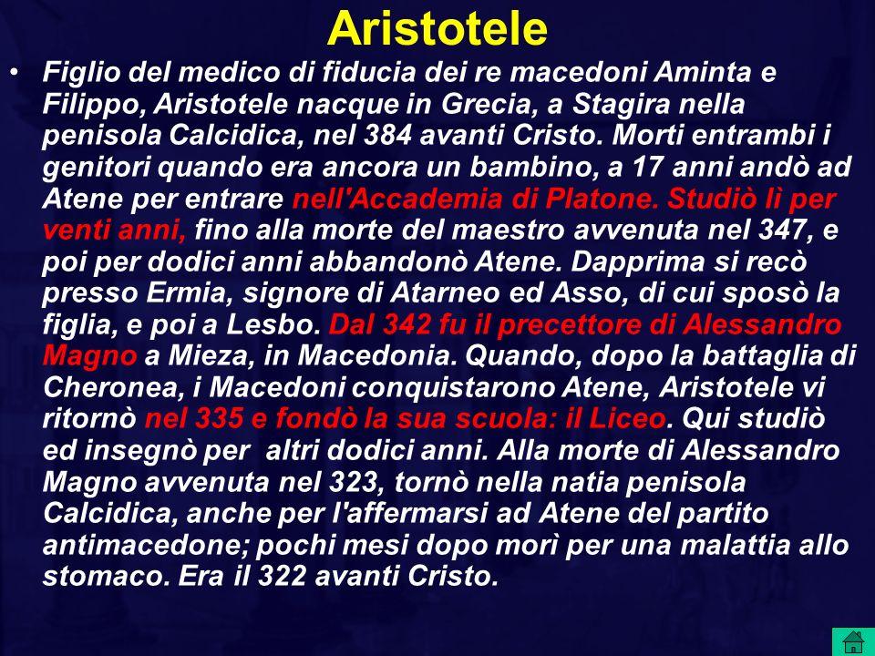 Figlio del medico di fiducia dei re macedoni Aminta e Filippo, Aristotele nacque in Grecia, a Stagira nella penisola Calcidica, nel 384 avanti Cristo.