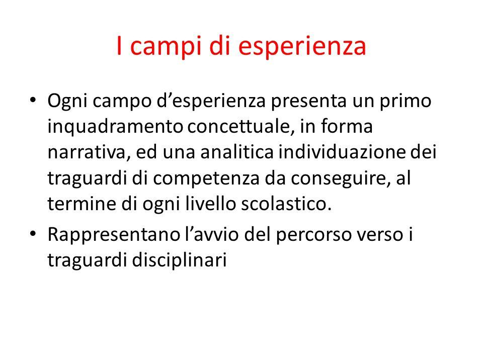 I campi di esperienza Ogni campo desperienza presenta un primo inquadramento concettuale, in forma narrativa, ed una analitica individuazione dei traguardi di competenza da conseguire, al termine di ogni livello scolastico.