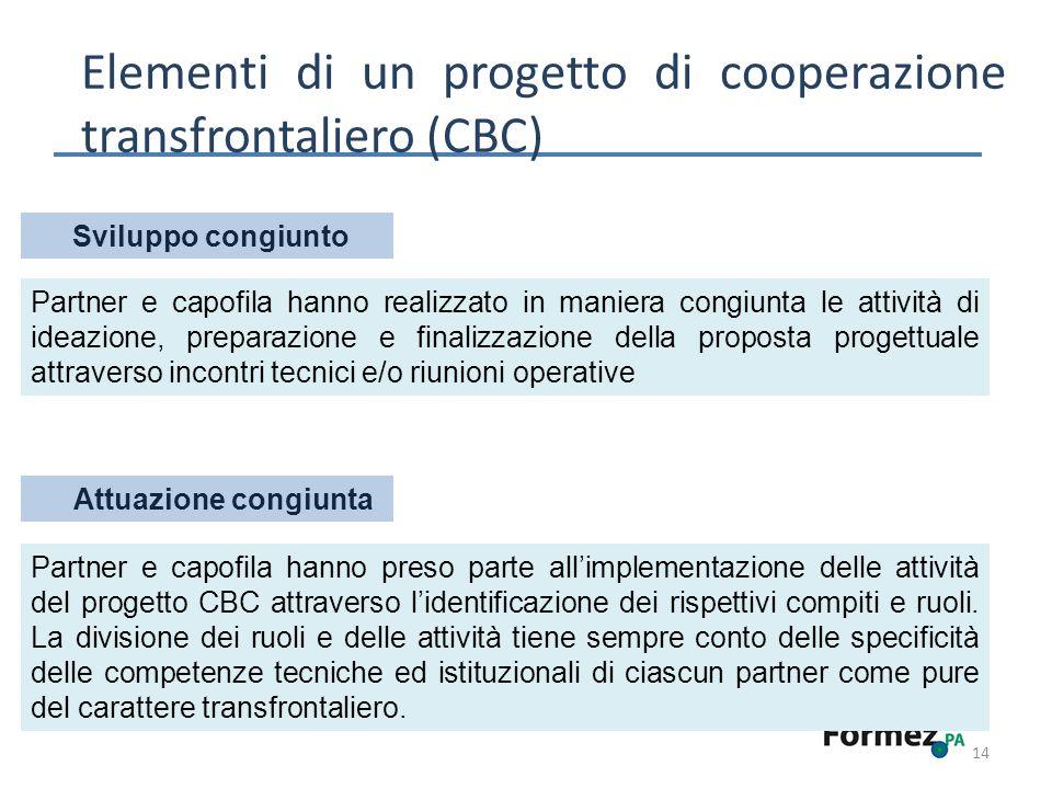 14 Elementi di un progetto di cooperazione transfrontaliero (CBC) Sviluppo congiunto Partner e capofila hanno preso parte allimplementazione delle attività del progetto CBC attraverso lidentificazione dei rispettivi compiti e ruoli.