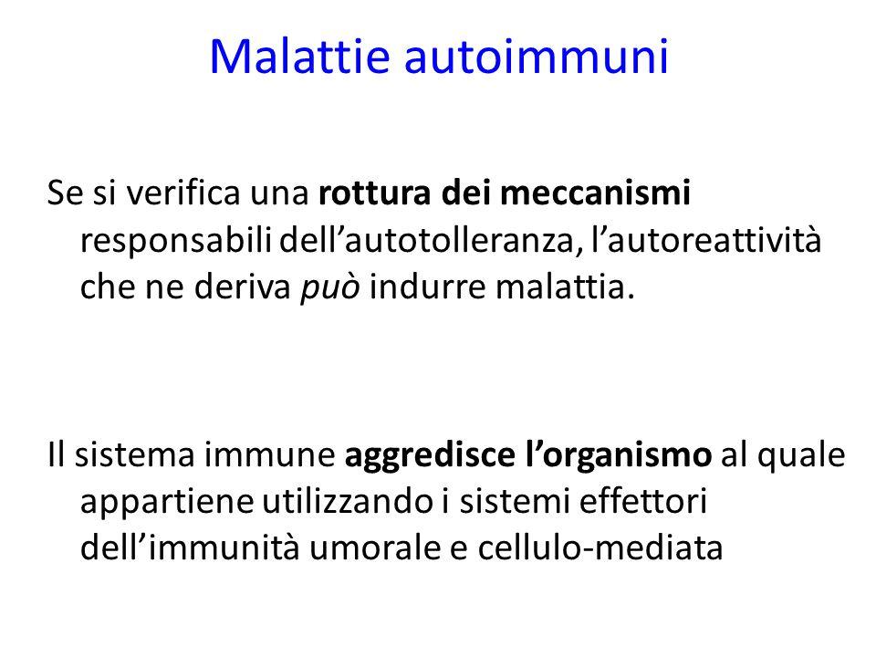 Malattie autoimmuni Se si verifica una rottura dei meccanismi responsabili dellautotolleranza, lautoreattività che ne deriva può indurre malattia.