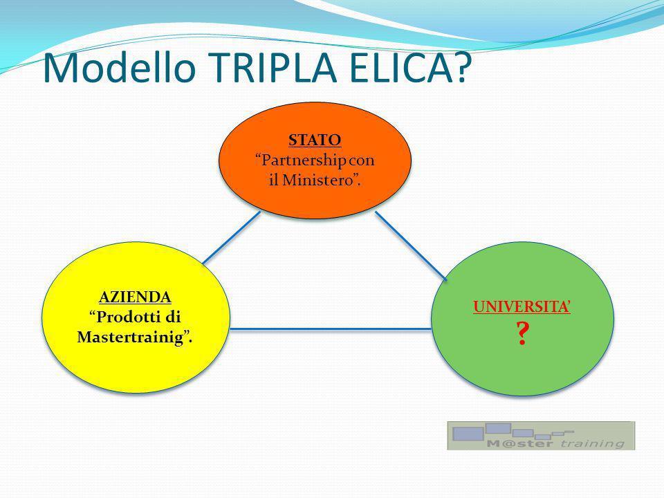 Modello TRIPLA ELICA. UNIVERSITA . STATO Partnership con il Ministero.