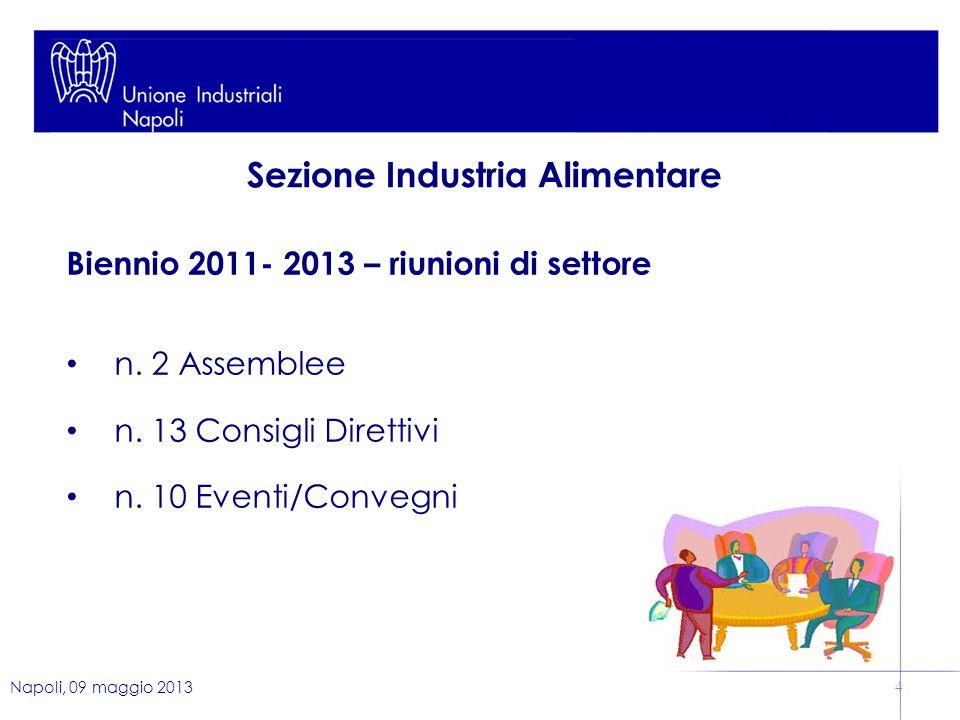 Napoli, 09 maggio 2013 4 Biennio 2011- 2013 – riunioni di settore n.