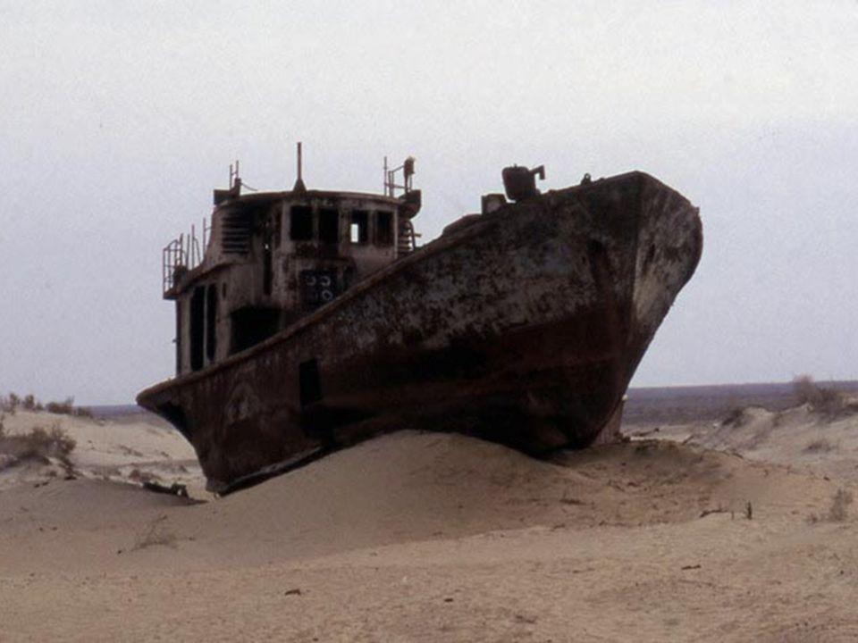 Il lago d Aral si trova in Asia centrale, è attraversato dal confine tra il Kazakistan e lUzbekistan Originariamente, l Aral con i suoi 68.000 km2 era il quarto lago del mondo