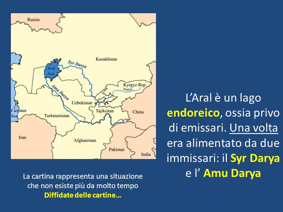 A partire dal 1960 l Aral ha preso a prosciugarsi.