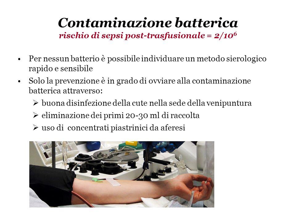 191/2005 Gazzetta Ufficiale N.