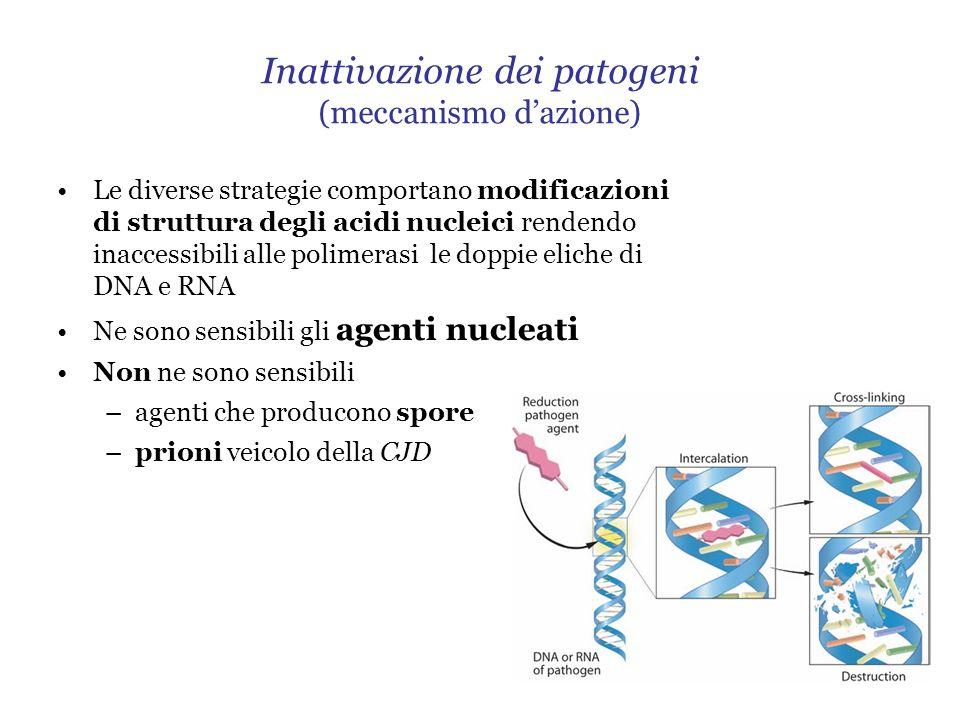 Inattivazione dei patogeni (meccanismo dazione) Le diverse strategie comportano modificazioni di struttura degli acidi nucleici rendendo inaccessibili alle polimerasi le doppie eliche di DNA e RNA Ne sono sensibili gli agenti nucleati Non ne sono sensibili –agenti che producono spore –prioni veicolo della CJD