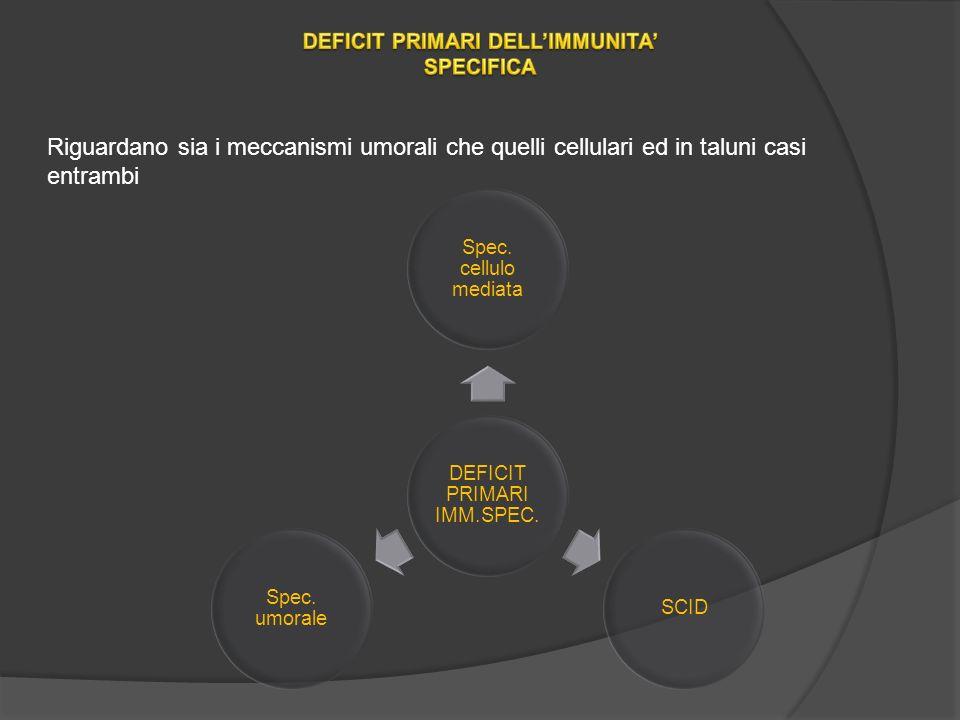 Riguardano sia i meccanismi umorali che quelli cellulari ed in taluni casi entrambi DEFICIT PRIMARI IMM.SPEC.
