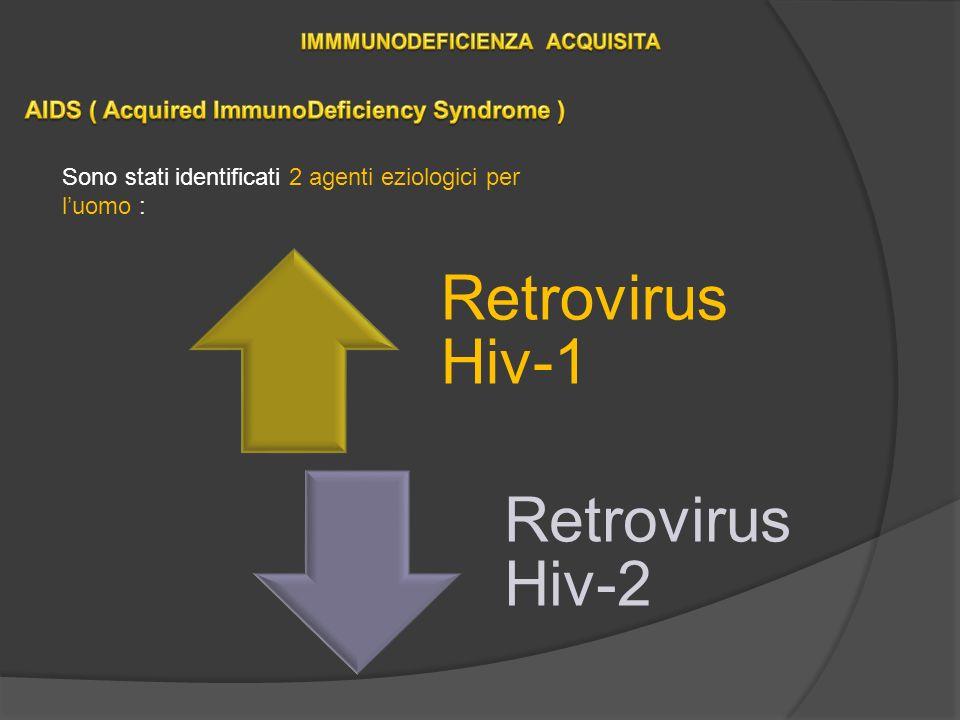 Retrovirus Hiv-1 Retrovirus Hiv-2 Sono stati identificati 2 agenti eziologici per luomo :