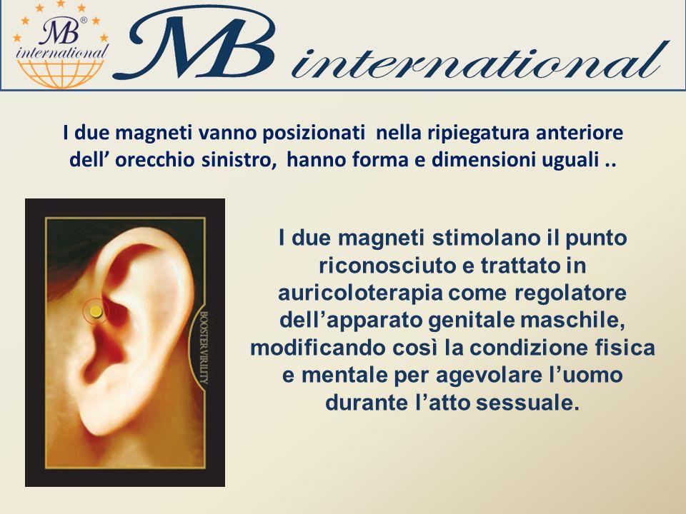 I due magneti vanno posizionati nella ripiegatura anteriore dell orecchio sinistro, hanno forma e dimensioni uguali.. I due magneti stimolano il punto