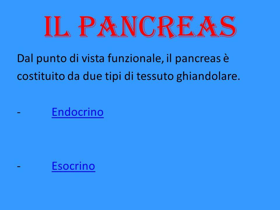 Il pancreas Dal punto di vista funzionale, il pancreas è costituito da due tipi di tessuto ghiandolare. - EndocrinoEndocrino - EsocrinoEsocrino