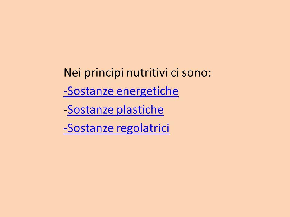 Nei principi nutritivi ci sono: -Sostanze energetiche -Sostanze plasticheSostanze plastiche -Sostanze regolatrici