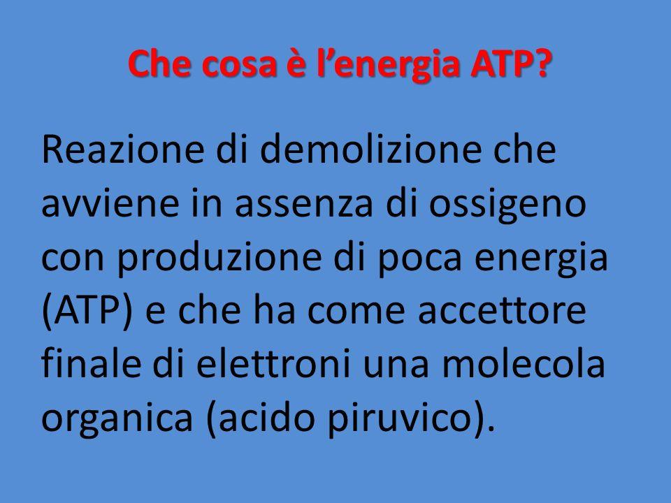 Che cosa è lenergia ATP? Reazione di demolizione che avviene in assenza di ossigeno con produzione di poca energia (ATP) e che ha come accettore final