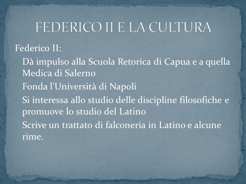 Federico II: Dà impulso alla Scuola Retorica di Capua e a quella Medica di Salerno Fonda lUniversità di Napoli Si interessa allo studio delle discipli