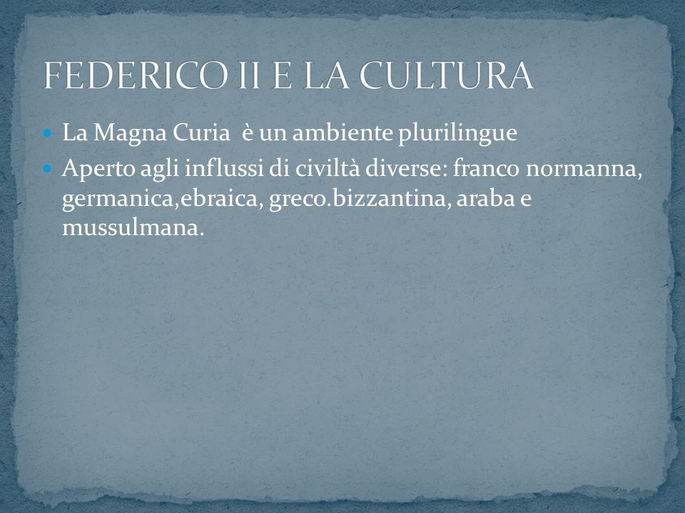 La Magna Curia è un ambiente plurilingue Aperto agli influssi di civiltà diverse: franco normanna, germanica,ebraica, greco.bizzantina, araba e mussul