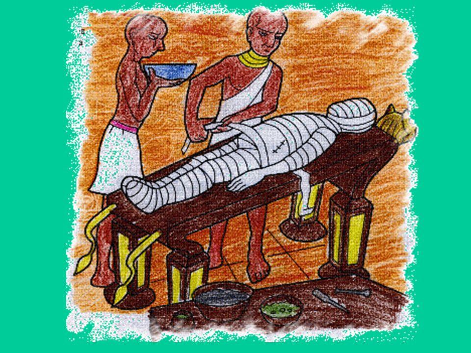 Il sesso di una mummia si distingue dalla posizione delle braccia Incrociate sul petto = maschio Un braccio lungo il fianco = femmina