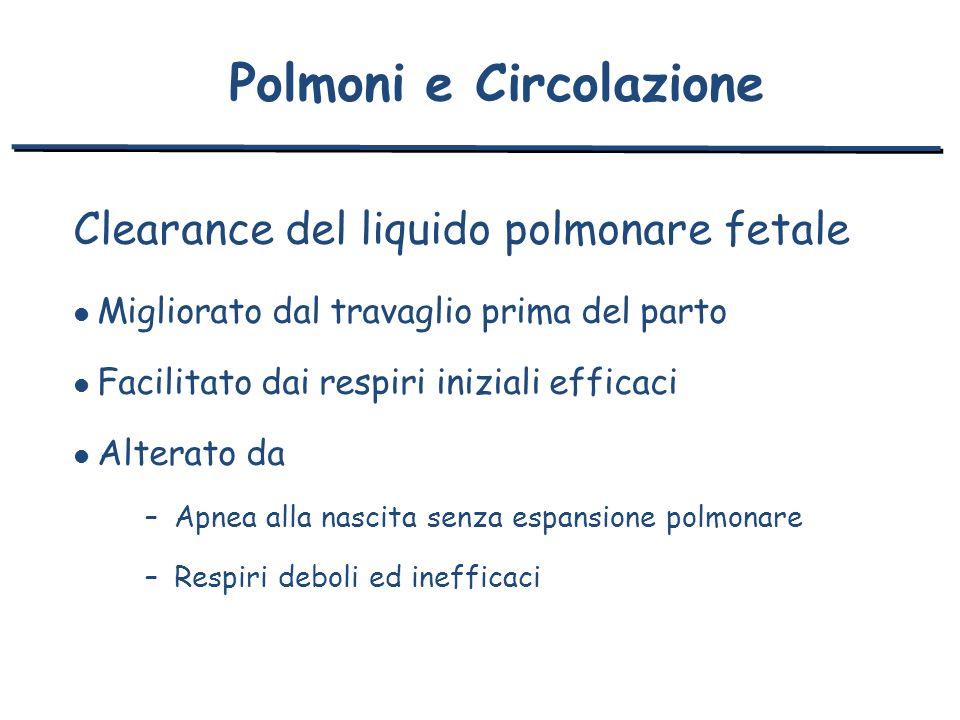Clearance del liquido polmonare fetale l Migliorato dal travaglio prima del parto l Facilitato dai respiri iniziali efficaci l Alterato da –Apnea alla
