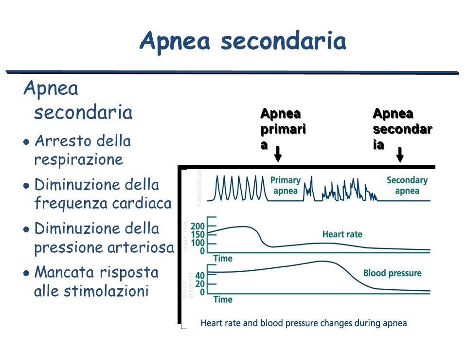 Apnea secondaria l Arresto della respirazione l Diminuzione della frequenza cardiaca l Diminuzione della pressione arteriosa l Mancata risposta alle s