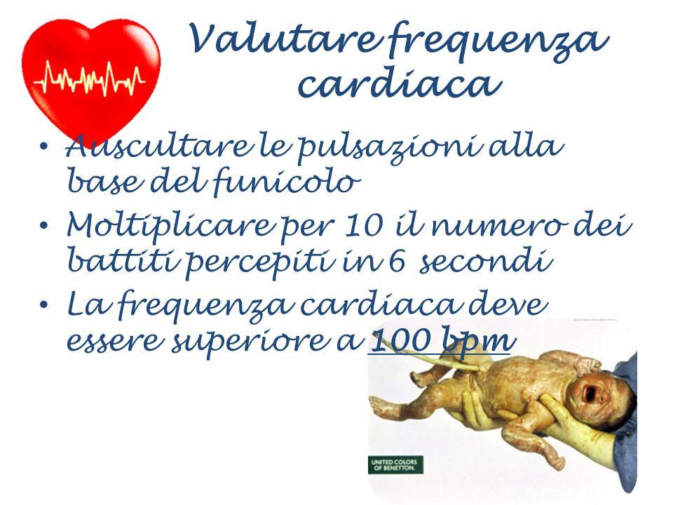 Valutare frequenza cardiaca Auscultare le pulsazioni alla base del funicolo Moltiplicare per 10 il numero dei battiti percepiti in 6 secondi La freque