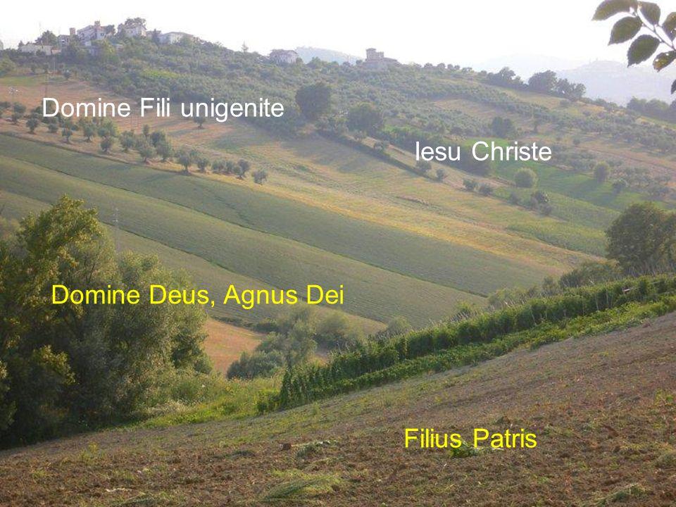 Domine Fili unigenite Iesu Christe Domine Deus, Agnus Dei Filius Patris