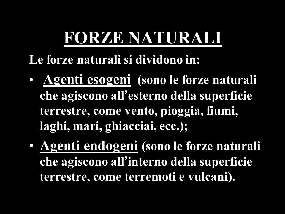 FORZE NATURALI Le forze naturali si dividono in: Agenti esogeni (sono le forze naturali che agiscono allesterno della superficie terrestre, come vento