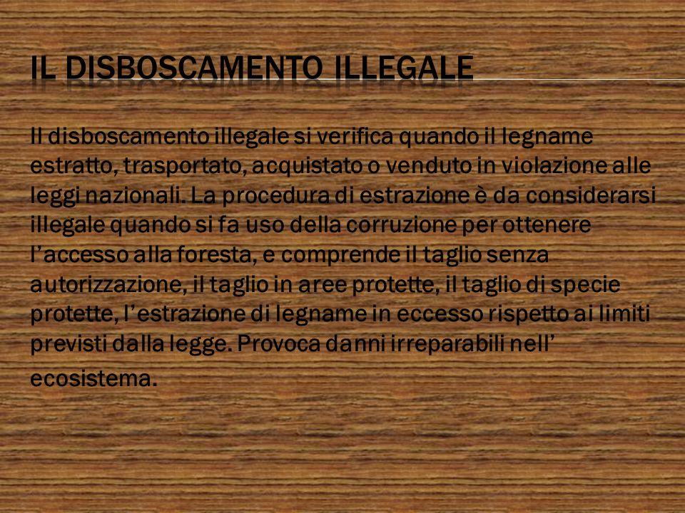 Il disboscamento illegale si verifica quando il legname estratto, trasportato, acquistato o venduto in violazione alle leggi nazionali. La procedura d