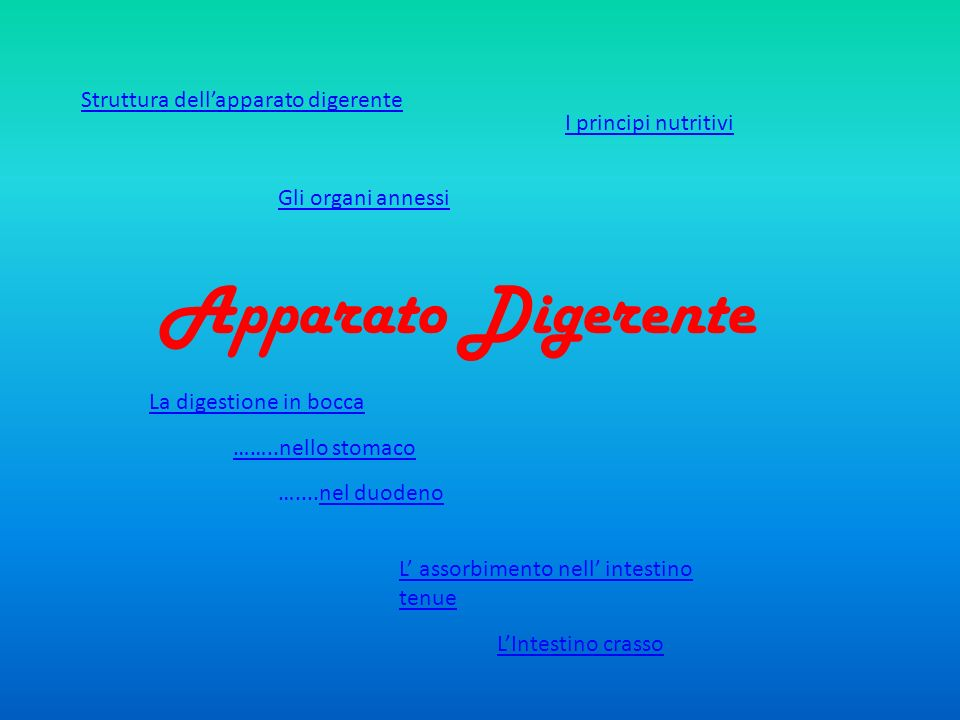 Apparato Digerente Gli organi annessi I principi nutritivi ……..nello stomaco …....nel duodenonel duodeno L assorbimento nell intestino tenue LIntestin