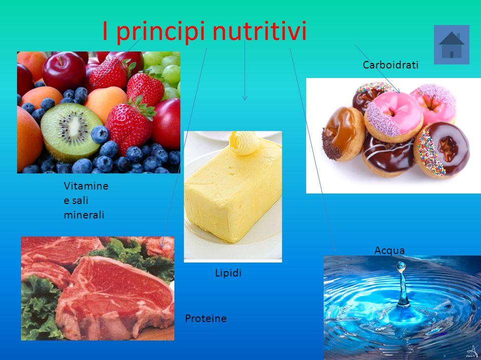 I principi nutritivi Proteine Carboidrati Lipidi Vitamine e sali minerali Acqua