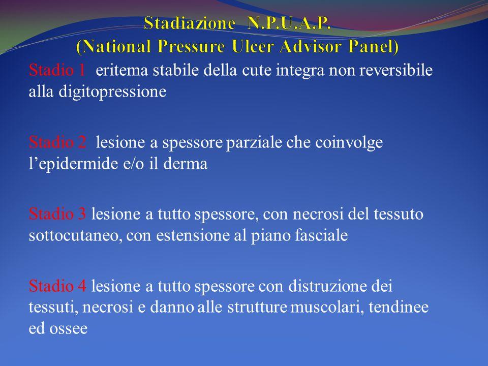 Stadio 1 eritema stabile della cute integra non reversibile alla digitopressione Stadio 2 lesione a spessore parziale che coinvolge lepidermide e/o il