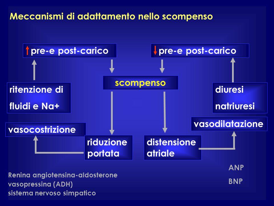 Meccanismi di adattamento nello scompenso pre-e post-carico ritenzione di fluidi e Na+ diuresi natriuresi vasocostrizione vasodilatazione scompenso di