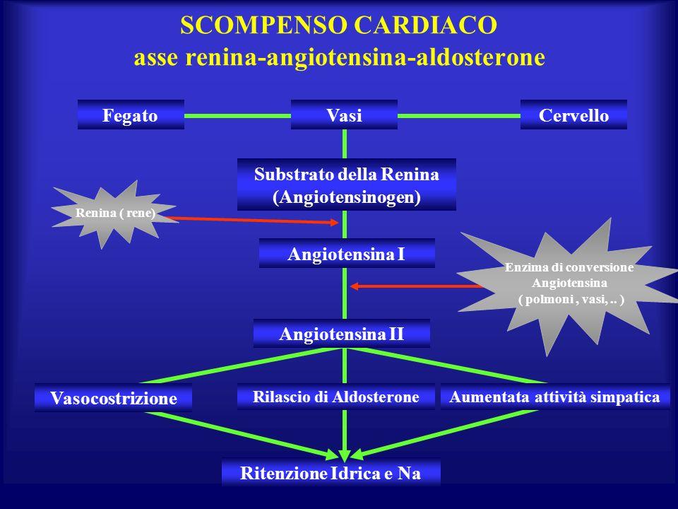 SCOMPENSO CARDIACO asse renina-angiotensina-aldosterone Ritenzione Idrica e Na FegatoCervello Angiotensina I Rilascio di Aldosterone Substrato della R
