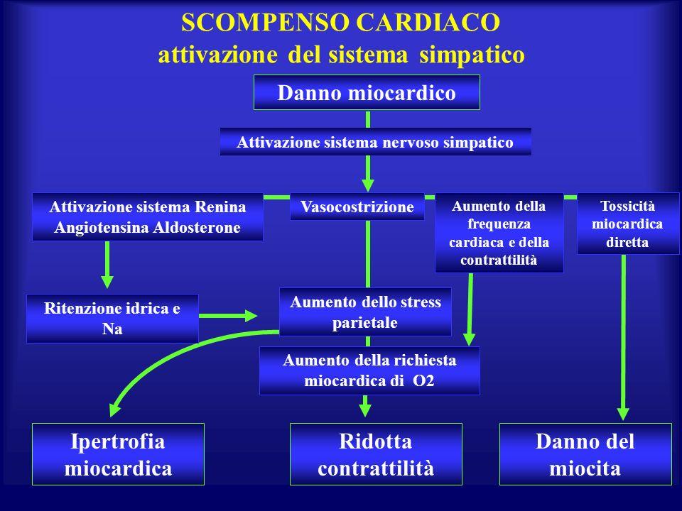 SCOMPENSO CARDIACO attivazione del sistema simpatico Danno miocardico Ipertrofia miocardica Ridotta contrattilità Danno del miocita Attivazione sistem