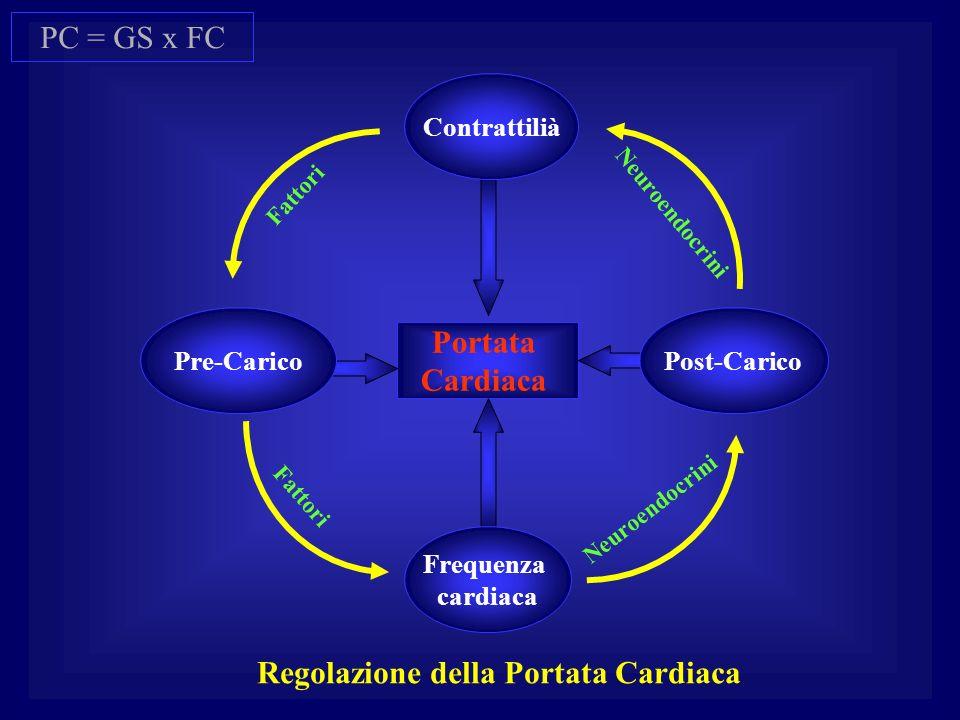 Portata Cardiaca Fattori Neuroendocrini Regolazione della Portata Cardiaca Contrattilià Post-Carico Frequenza cardiaca Pre-Carico PC = GS x FC
