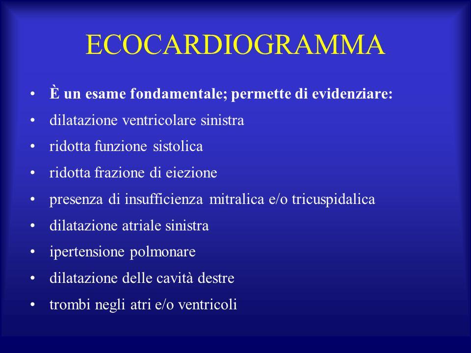 ECOCARDIOGRAMMA È un esame fondamentale; permette di evidenziare: dilatazione ventricolare sinistra ridotta funzione sistolica ridotta frazione di eie