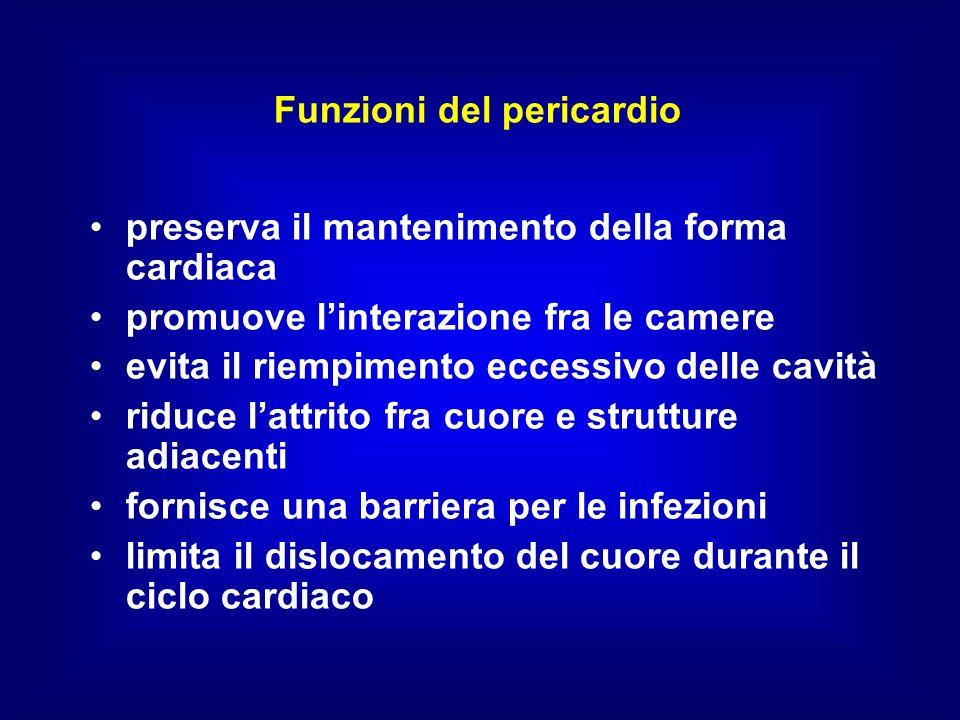 Funzioni del pericardio preserva il mantenimento della forma cardiaca promuove linterazione fra le camere evita il riempimento eccessivo delle cavità