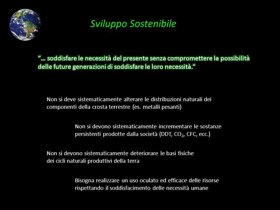 Sviluppo Sostenibile Non si deve sistematicamente alterare le distribuzioni naturali dei componenti della crosta terrestre (es. metalli pesanti) Non s