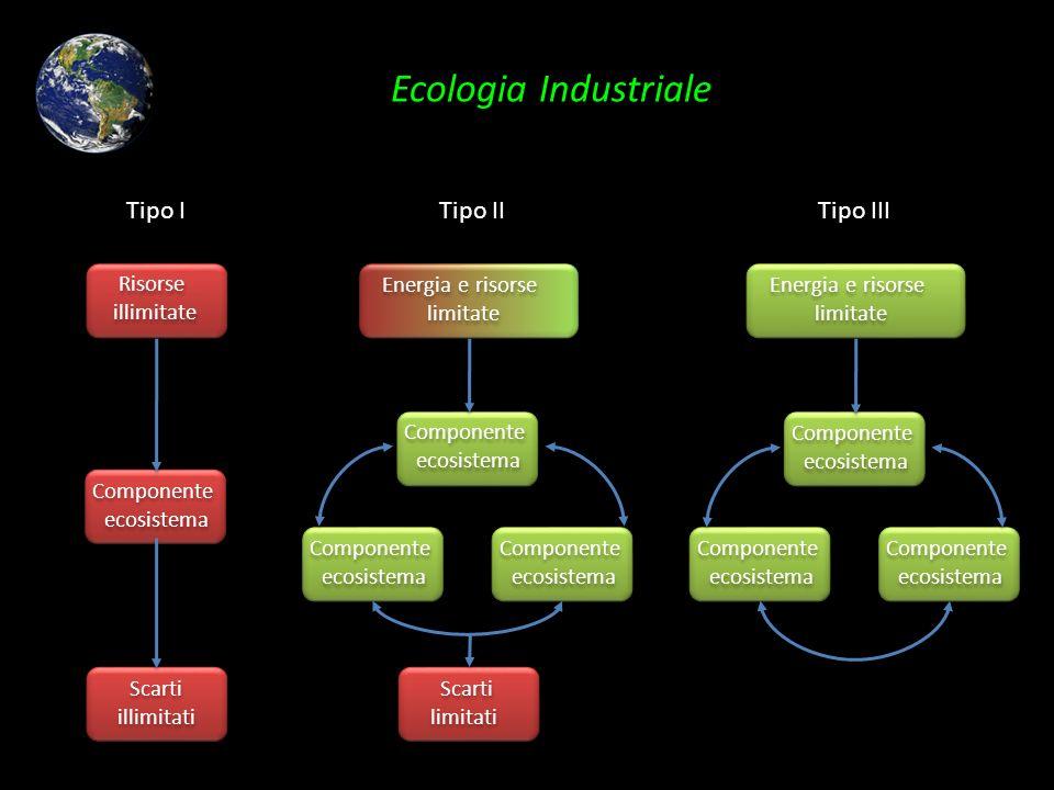 Ecologia Industriale Risorse illimitate Risorse illimitate Componente ecosistema Componente ecosistema Scarti illimitati Scarti illimitati Tipo I Comp