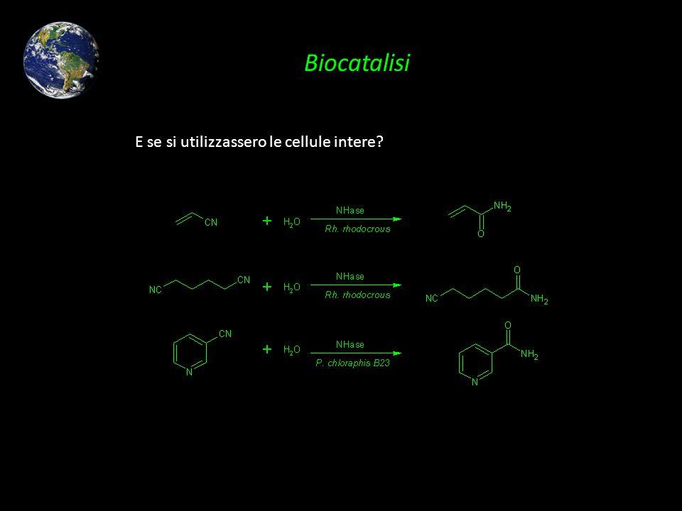 Biocatalisi E se si utilizzassero le cellule intere?