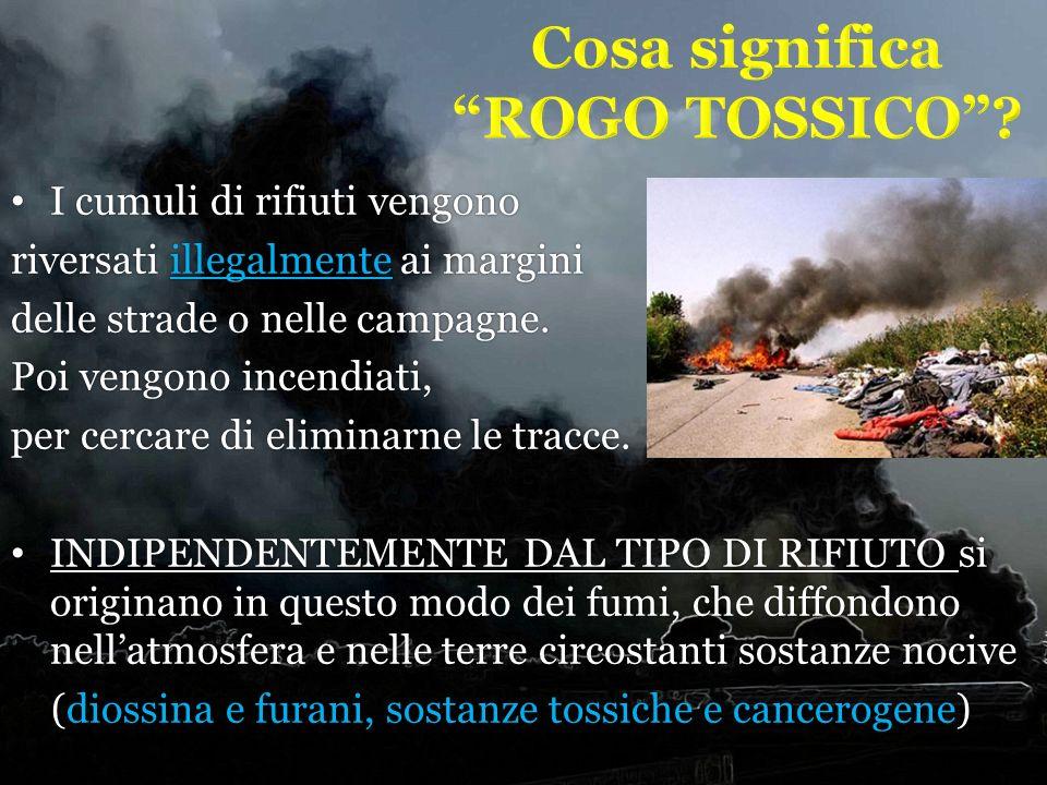 I cumuli di rifiuti vengono I cumuli di rifiuti vengono riversati illegalmente ai margini delle strade o nelle campagne. Poi vengono incendiati, per c