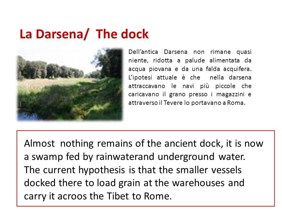 La Darsena/ The dock Dellantica Darsena non rimane quasi niente, ridotta a palude alimentata da acqua piovana e da una falda acquifera.